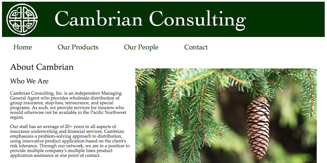 Cambrian Consulting screenshot