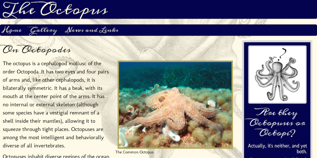 Octopus screenshot
